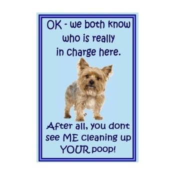 Tool Box Magnet Funny Dog Yorkie Yorkshire Pooping Refrigerator