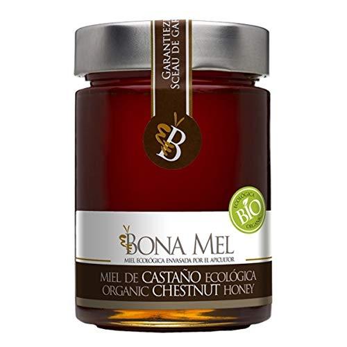 100% roher Kastanien Honig / naturbelassen / reine Imkerabfüllung aus Spanien/ Höchste Qualität/ Ohne Zusatzstoffe/Gluten Frei/450 GR