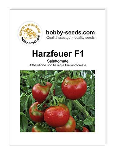 Harzfeuer F1 Tomatensamen von Bobby-Seeds Portion