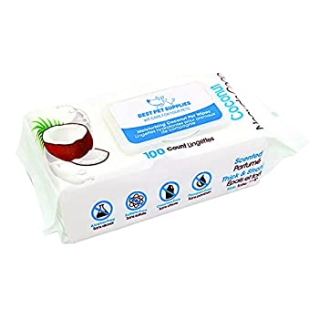 Best Pet Supplies EverScented Pet Grooming Wipes for Dogs and Cats with Moisturizing Coconut Essential Oil Hypoallergenic and Deodorizing  100 Count   WW-CO-100