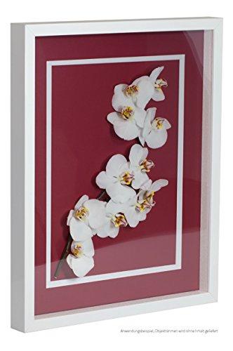 Bildershop-24 Objektrahmen FrameBox VARIO36 Weiß (matt) 30x40cm zum Einrahmen von Trikots, Blumen, Passepartouts etc.