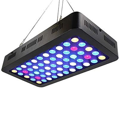 WYNA Lumière de Croissance des Plantes d'aquarium à LED, 165 W Spectre Complet Gradable Dual Switch Bleu Blanc Lampe à Trois Modes Récif de Corail Poissons en Pleine Croissance,EU