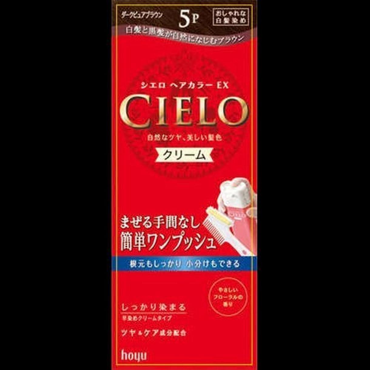 三十宿題公平なシエロ ヘアカラーEXクリーム 5P + ダークピュアブラウン ×2セット
