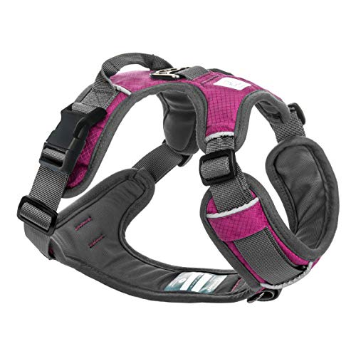 Embark Adventure Dog Harness, Easy On and Off with Front and Back Leash Attachments & Control Handle - No Pull Training, Size Adjustable and Non Choke (Small, Pink)
