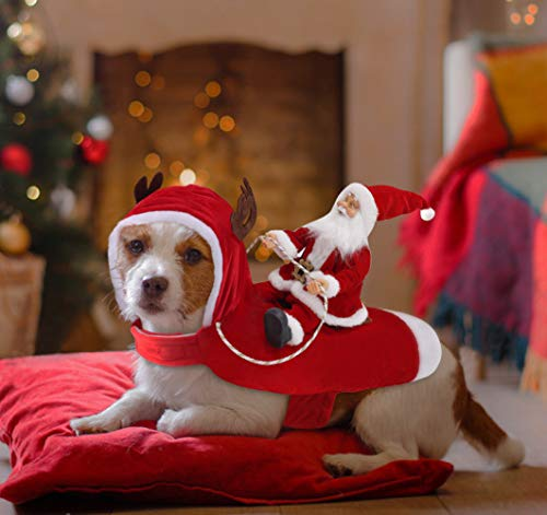 Dog Christmas Fancy Dress Outfit