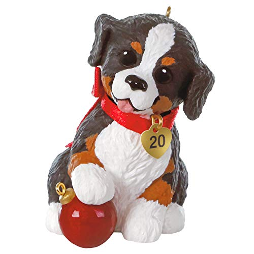 Hallmark Keepsake Christmas Ornament 2020 Year-Dated, Puppy Love Australian Shepherd