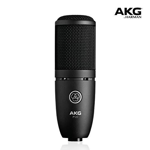 AKG P120 Studio Condenser Recording Microphone