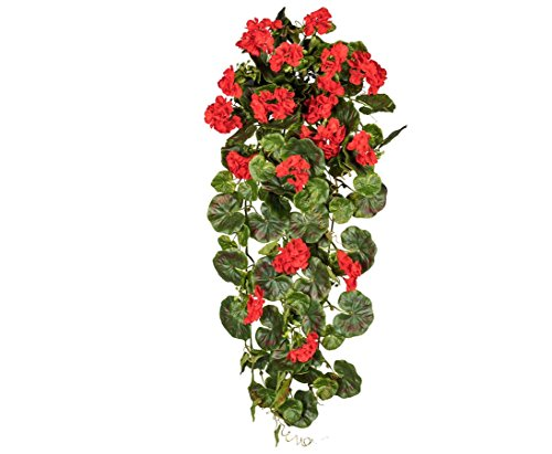 Geranienhänger con 17 Roten Kunstblumen 80 cm, UV-continuamente - Kunstpflanzen Artificiales Flores...