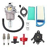 Ocobudbxw Carburatore 796109 591731 594593 14,5 CV - 21 CV Carburatore...