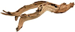 Koyal Wholesale California Driftwood with Natural Brown Branches, 24-Inch