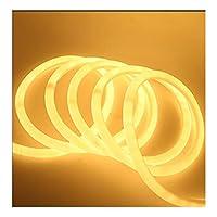 ラウンドLEDソフトランプ220V 230V 240V SMD LED 2835フレキシブルネオンチューブ120LED IP68防水ロープ文字列 ZHANGHA (Emitting Color : Warm White, Size : 5m)