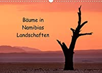 Baeume in Namibias Landschaften (Wandkalender 2022 DIN A3 quer): Der Baum in verschiedenen Landschaften Namibias. (Monatskalender, 14 Seiten )