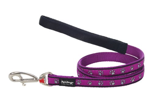 Red Dingo Dog Lead Purple Background Stamp Grey