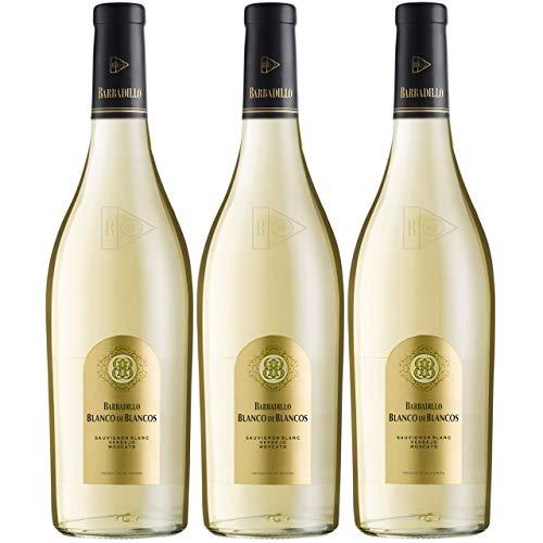 Barbadillo Blanco de Blancos | Vino Blanco Seco Verdejo, Sauvignon Blanc y Moscatel - Estuche 3 x 75 cl