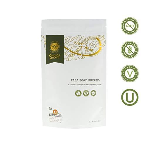 Druids Grove Faba Bean Protein Concentrate ☮ Vegan ⊘ Non-GMO ❤ Gluten-Free ✡ OU Kosher Certified - 8 oz.