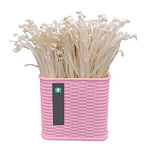 DRSM Oyster Mushroom Grow Kit, Anfänger Pilz Plug Spawn Essbare Mycel Plugs Start Kit, Züchte Deine eigenen Pilze für das ganze Jahr Runde, rosa, Enoki Pilz