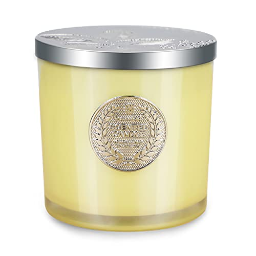 FBK Clearance Scented Candles, Aromatherapy Soy Candle for Home, Lemon Verbena and Mandarin, 70 Hour Burn Time, 13 Oz, 2 Wick, Gift