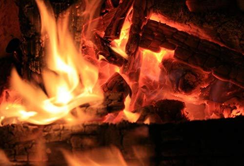 Pared de ladrillo Chimenea Fuego de Madera Llama ardiente Fotografía Telón de Fondo Retrato de bebé Fondo fotográfico Estudio fotográfico Photocall A12 10x7ft / 3x2.2m