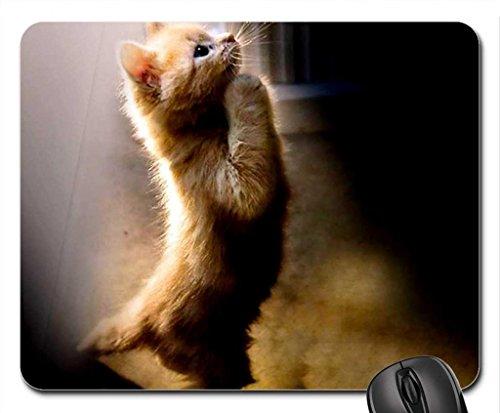 A New Year S Prayer. Mouse Pad, Tapis de Souris (Cats Mouse Pad)