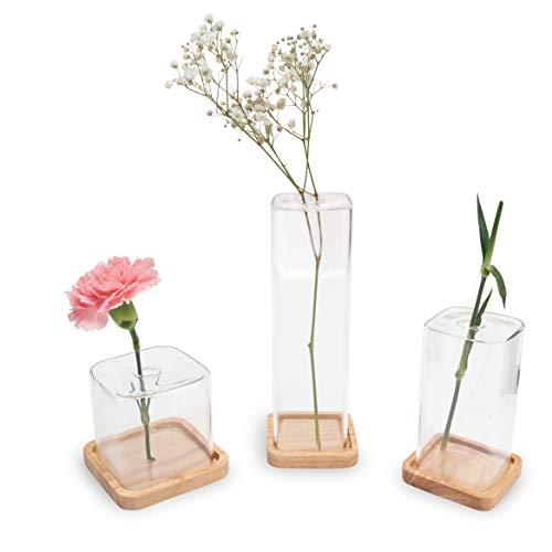 LUUK LIFESTYLE Zylindrische Glas Vase Deko Set, Deko Vase, Glas Vase, Vase Mini, Vase Set, Glas Vase klein, eckig, rund, transparent, Vintage Stil, skandinavischens Design,