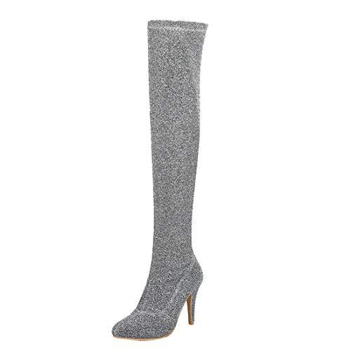 Birdsight Damen Glitzer Overknee Stiefel Stiletto High Heels Langschaft Stiefel mit 10cm Absatz Spitze Lange Boots (Silber,37)