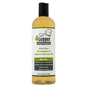 Best organic flea shampoo for dogs