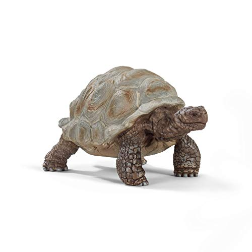 SCHLEICH Wild Life, Animal Figurine, Animal Toys for Boys and Girls 3-8 Years Old, Giant Tortoise