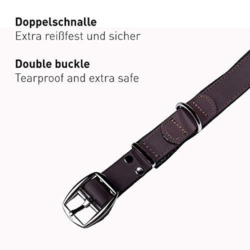 PetTec Hundehalsband aus Trioflex™ mit Polsterung, Braun, Wetterfest, Wasserabweisend, Robust - 2