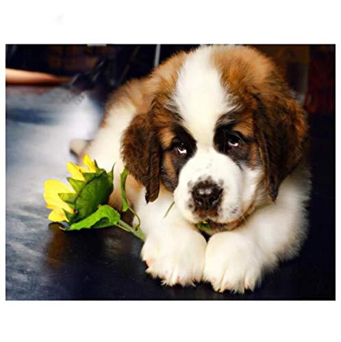 5D Bricolaje Pintura De Diamante Digital Perros Animales Flores Lindas Mosaico Taladro Redondo Completo Punto De Cruz Arte Sala De Estar Decoración Del Hogar Regalos 40×50cm