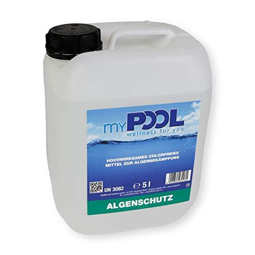 Paradies Pool Algizid 5 Liter schaumfrei