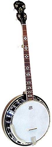 Ashbury DBJ-45/5 - Banjo tenor