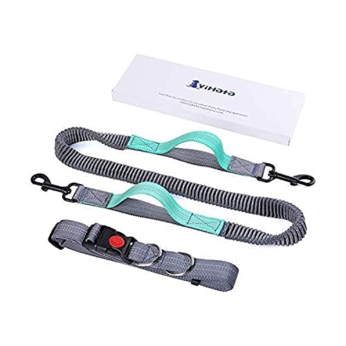 YIHATA Hands Free Dog Leash for Running, Walking, Hiking, Cycling, Dual-Handle Training Bungee Harness, with Adjustable Waist Belt and Reflective Stitching for Medium to Small Dogs (Lemon Green)