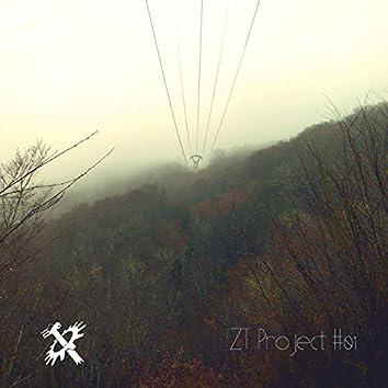 ZT Project 01