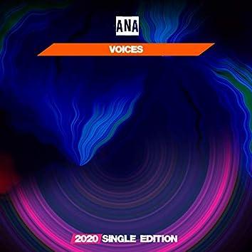 Voices (Dj Mauro Vay GF 2020 Short Radio)