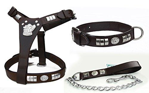 Pets2Care STAFFIE STAFFORDSHIRE BULL TERRIER - Juego de arneses, collar y cadena para perro, color negro y marrón