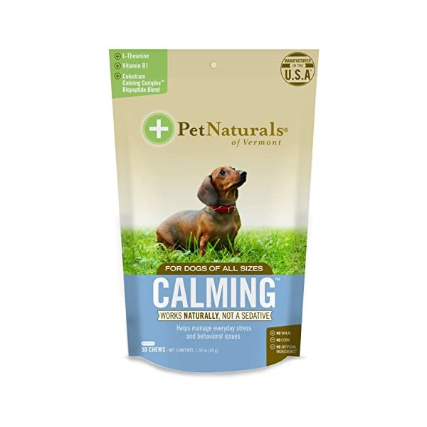 Pet Naturals of Vermont – Calming for Dogs, Natural Behavior Support for Stress Inducing Events, 30 Bite-Sized Chews Includes Naturally Sourced Anxiety Calming Ingredients