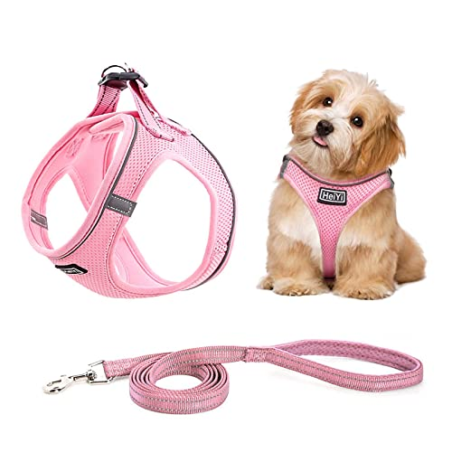 HeiYi Puppy Harness and Leash Set, Dog Harness Vest Set Reflective and Breathable Material, Fit for Small Medium Pet Vest Harness Set, No Pull No Choke