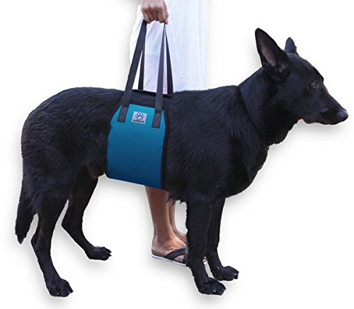 XL Blue Dog Lift Support Harness for canine aid - Lifting Older K9 with handle for Injuries, Arthritis or Weak hind legs & Joints. Large / X-large breed Assist Sling for mobility & Rehabilitation