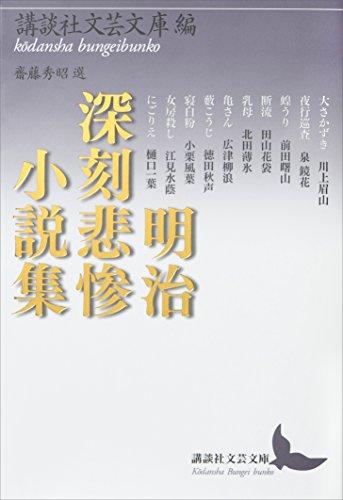 明治深刻悲惨小説集 (講談社文芸文庫)
