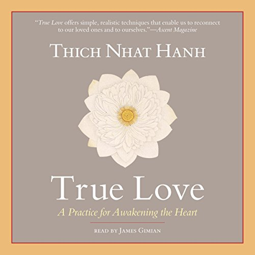 True Love audiobook cover art