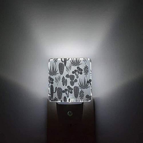 Cactus Plaid Night Light Lámpara LED Sensor automático Paquete de 2 luces nocturnas Se conectan a la pared Classic English Tartan Plaid Cells Stripes Scottish Geometric Traditional Room Decoración br