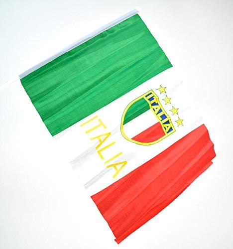 Vlag Italië met staaf en logo