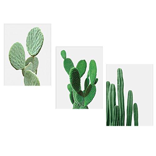 cuadro cactus fabricante non-brand