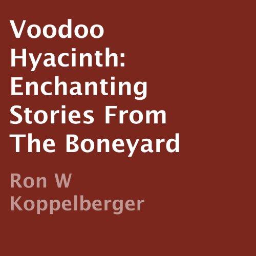 Voodoo Hyacinth audiobook cover art