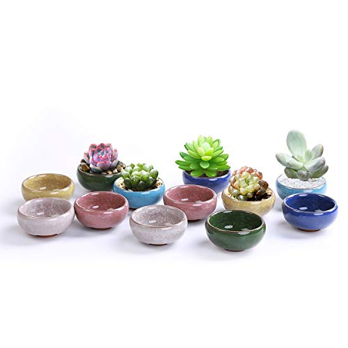 JMINTG 2.5 Inch Ceramic Ice Crack Zisha Serial Succulent Plant Pot Cactus Plant Pot Flower Pot Container Planter Full Colors Package 1 Pack of 12