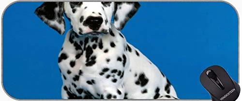 Mousepad Grande con Tela con Textura Premium, Oficina de ratón de Bulldog francés