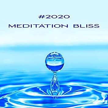 #2020 Meditation Bliss: Collection of 15 Best Ambient Tracks Composed for Full Yoga Immersion, Deepest Focus on Meditation and Inner Contemplation