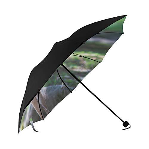 Paraguas De Hombre  marca Gednix