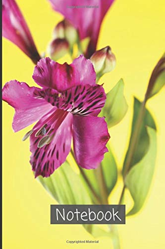 Alstroemeria Notebook: A lined diary, which writes thoughts , ideas, goals, observations and new habits| White lined Diary Abstract Alstroemeria ... (Alstroemeria Notebook and Journal, Band 64)