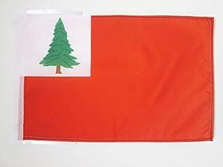 AZ FLAG Bandera de Nueva Inglaterra 45x30cm - BANDERINA Continental 30 x 45 cm cordeles